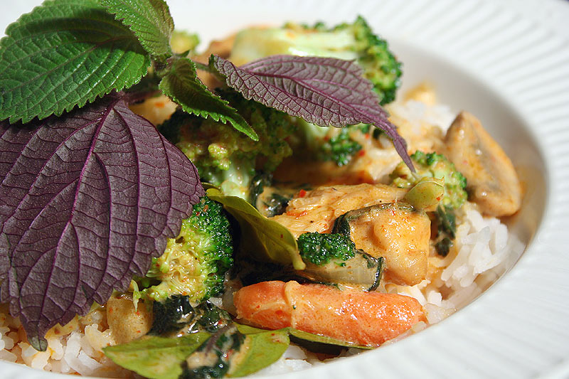 thai red curry fish