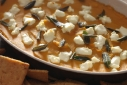 Knorr Homestyle Stock: Butternut Squash, Chevre &#038; Sage Dip